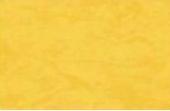 黄色色系地板
